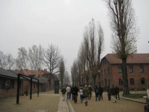 Auschwitz (22)