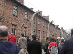 Auschwitz (28)