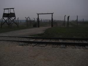 The track going into Birkenau