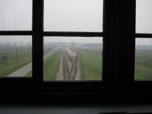 Birkenau (4)