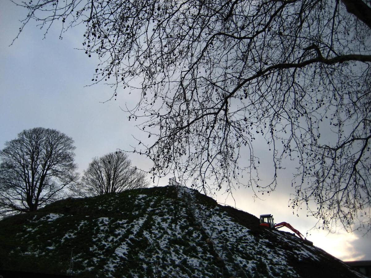 In Pictures: Snowy Oxford