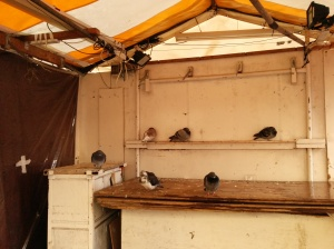 Market stall. Apparently selling pigeons.